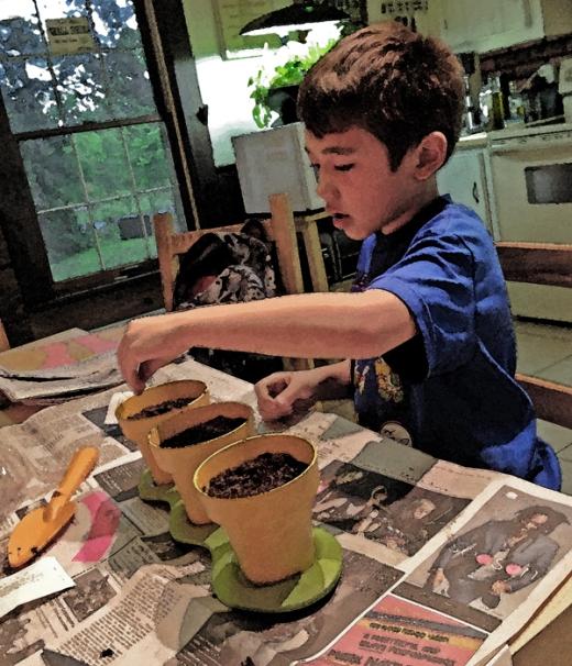 Busy: Aidan's Garden